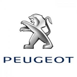 Cámaras de aparcamiento para coches y furgonetas Peugeot