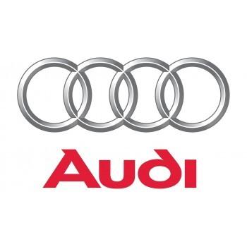 Camaras Audi