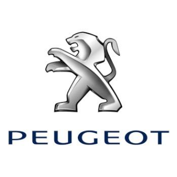 Camaras Peugeot